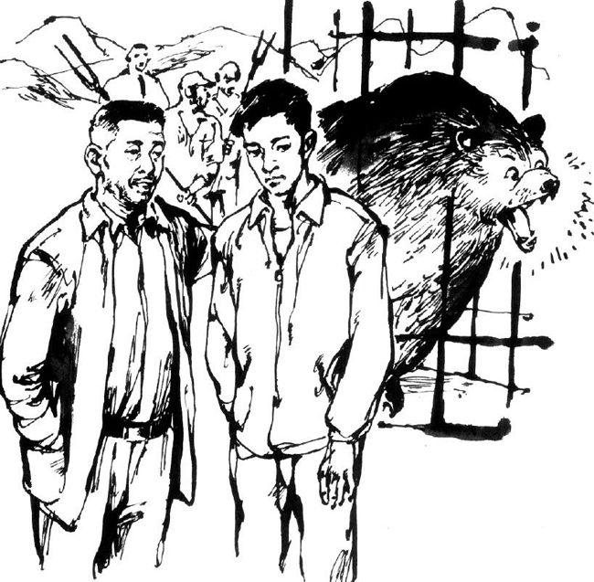 人比熊厉害